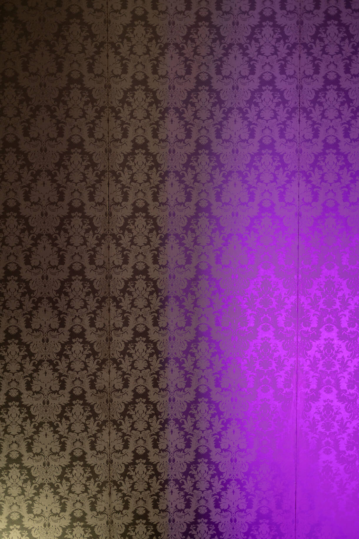 Detail view of lilac lights' of the raval hotel